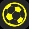 足球核心欧洲杯版