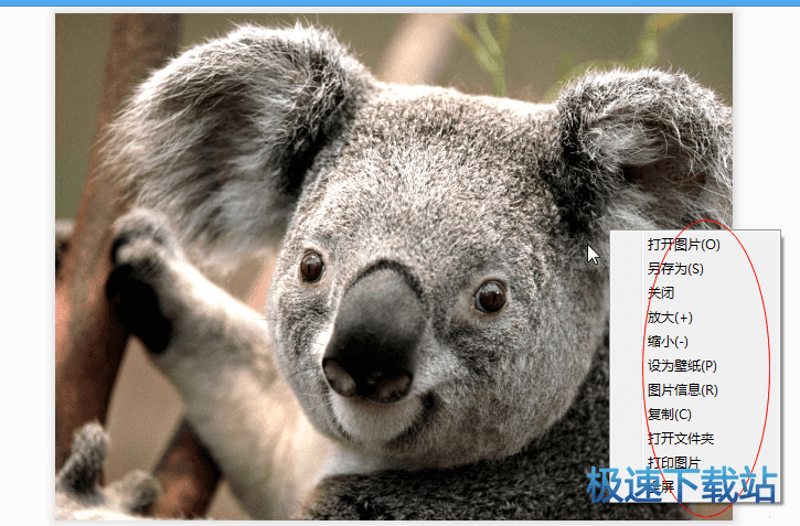 小巧图片照片浏览软件