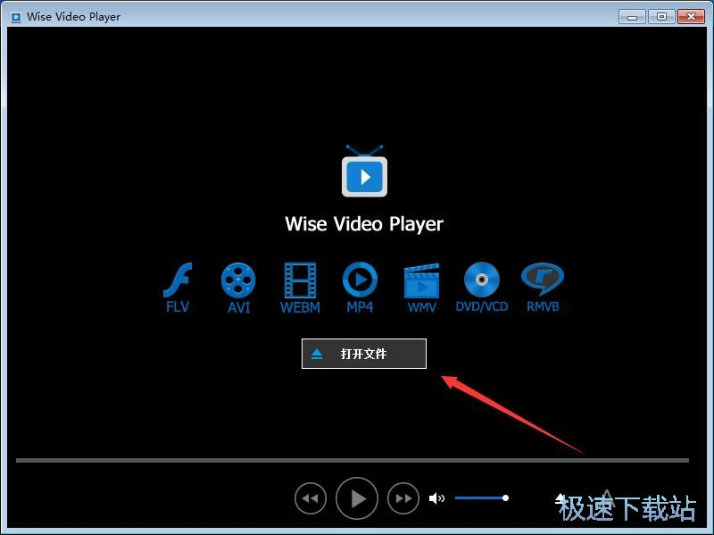 wise video player