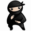 System Ninja下载