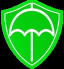青春保护伞