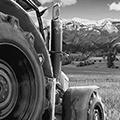 农场经理2018修改器+3