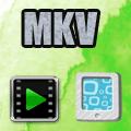 万嘉MKV格式转换器