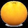 橘子水印添加器