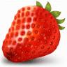 草莓文件加密器