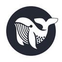 鲸鱼浏览器