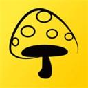 蘑菇丁下载