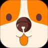 铃铛宠物社区