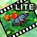 VIdeoStiller Lite下载
